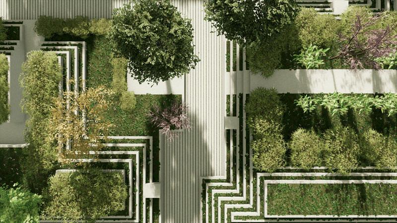 progettazione delle aree verdi - pianta