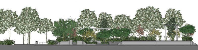 progettazione delle aree verdi - Sezione