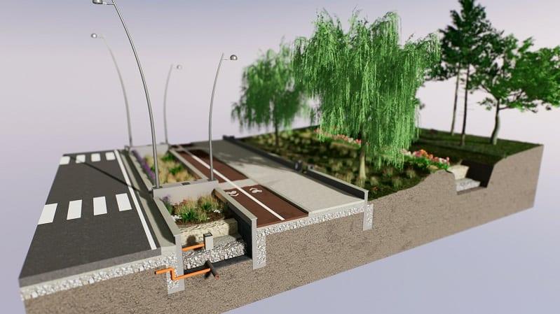 progettazione di un rain garden complesso