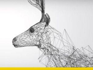Intelligenza artificiale animali