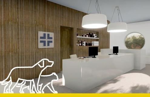 cover_ambulatorio veterinario