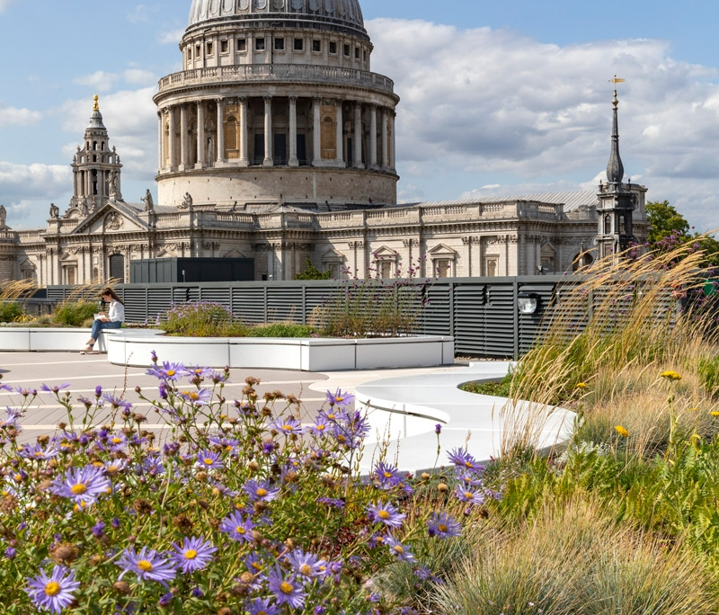 Immagine a colori che mostra una vista dal tetto giardino del Palazzo del Financial Times sulla Cattedrale di S. Paul di Londra
