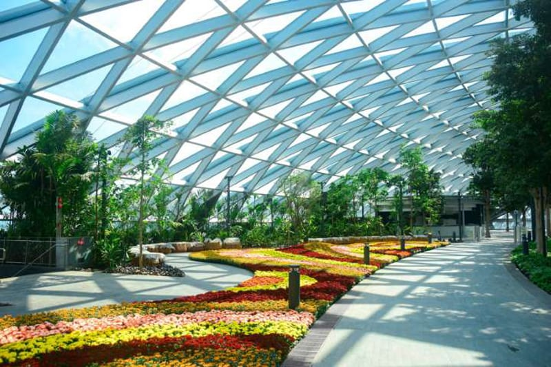 Aeroporto internazionale Changi di Singapore: il giardino floreale