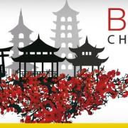 BIM-CHINA