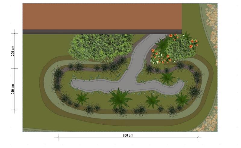 Progetto di rain-garden - pianta
