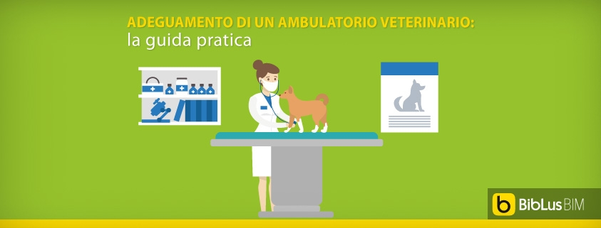 Adeguamento di un ambulatorio veterinario: la guida pratica